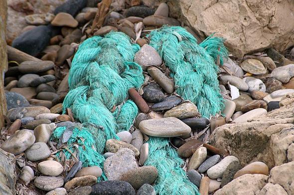 Auch Reste von Fischernetzen finden sich mitunter an den Stränden der Nordsee.