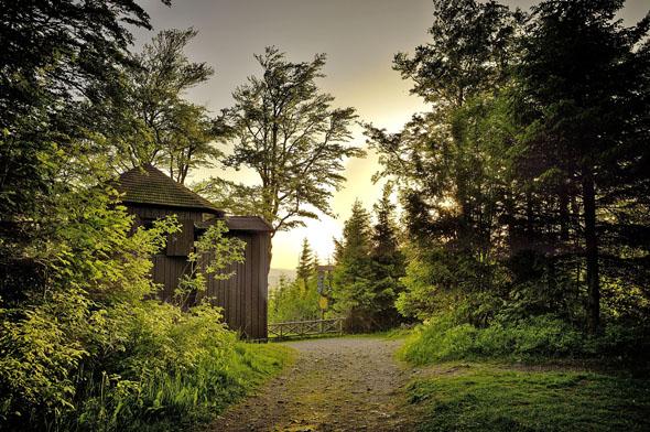 """Im romantischen Goethehäuschen schrieb Goethe einst sein berühmtes Gedicht """"Wandrers Nachtlied"""" direkt an die Bretterwand. (Foto: djd)"""