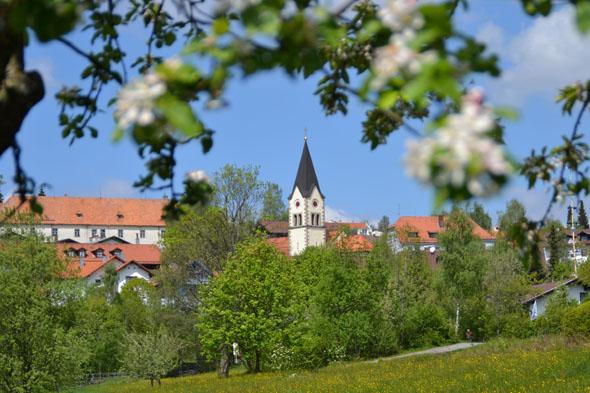 St. Englmar im Bayerischen Wald ist ein idealer Ausgangspunkt für spannende Urlaubserlebnisse. (Foto: djd)