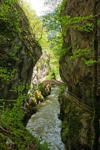 Steinerne Brücken queren die Areuse, die sich ihren Weg durch enge Schluchten bahnt. (Foto: Christof Sonderegger)