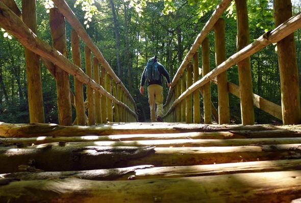 Zwischenzeitlich scheint man sogar im wahrsten Sinne des Wortes auf dem Holzweg - wie an dieser Brücke über die Warnow. (Foto Martin Simon)