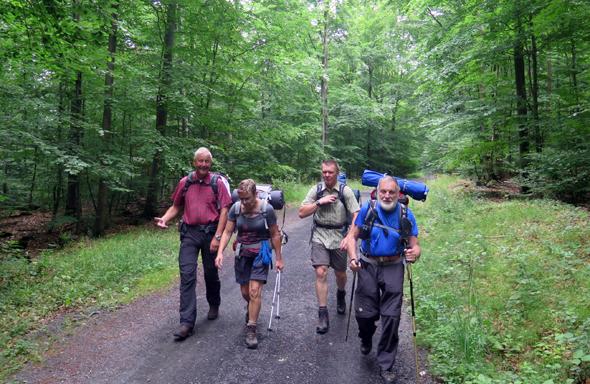 Auch schattige Waldstücke - wie hier auf dem Weg nach Oberfell - charakterisieren den Pilgerweg. (Foto Karl-Heinz Jung)