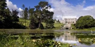 Mehr als nur grün:Die schönsten Gärten Irlands