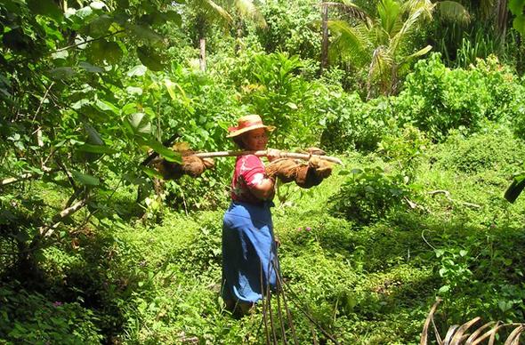 Die Samoaner gelten als ausgesprochen weltoffen und gastfreundlich.