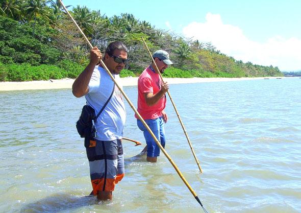 Ein besonderes Erlebnis: Auf Krabben-Jagd in den Mangroven. (Foto Katharina Büttel)