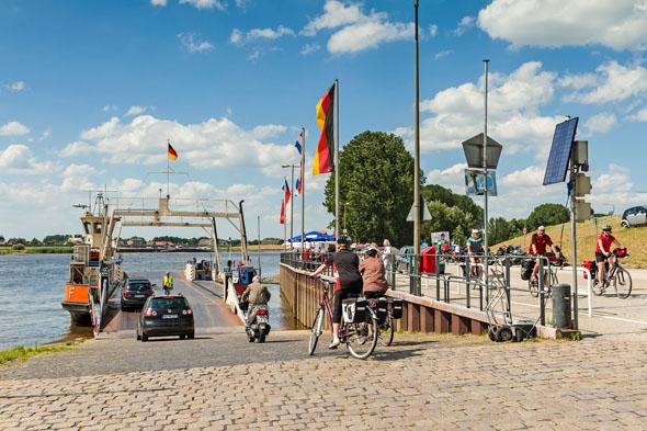 Per Rad kann man die Natur entlang der Elbe besonders intensiv und individuell erkunden. (Foto: Markus Tiemann)