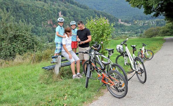 Der sogenannte Odenwald-Madonnen-Radweg führt von Tauberbischofsheim durch den Odenwald, das Neckartal und die Rheinebene bis nach Speyer. (Foto: djd)