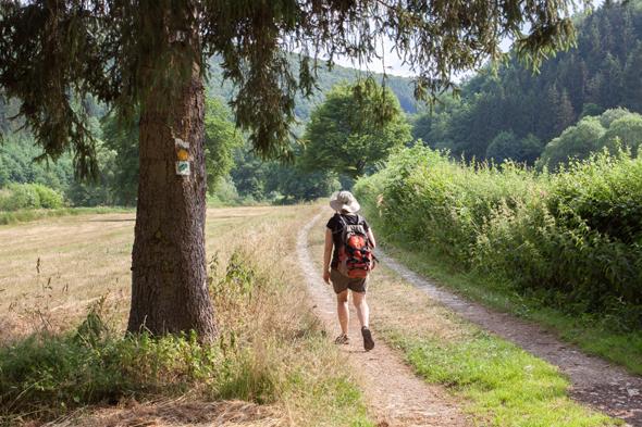 Luxemburg ist - wie hier im lieblichen Ourtal - klein und wunderbar wanderbar. (Foto Astrid Holler)