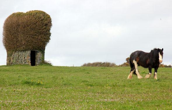 Ruine einer Windmühle auf Little-Sark. (Foto Karsten-Thilo Raab)