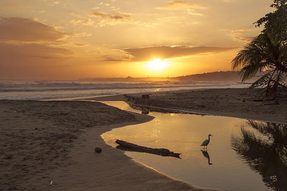 Traumstrände und eine atemberaubende Flora und Fauna kennzeichnen Costa Rica.