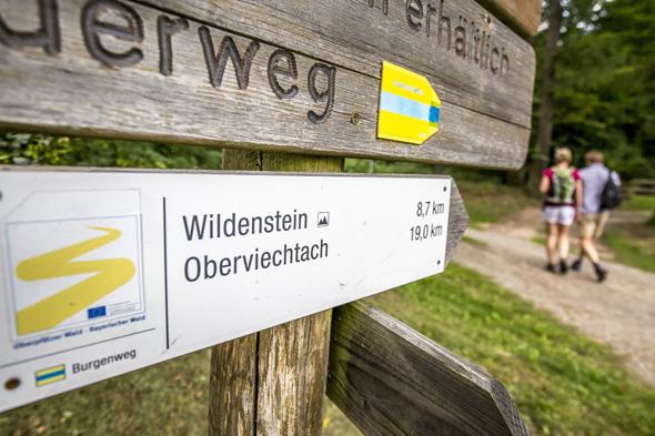Der Doldsteig durch den Oberpfälzer Wald ist optimal ausgeschildert. (Foto Tourismuszentrum Oberpfälzer Wald)