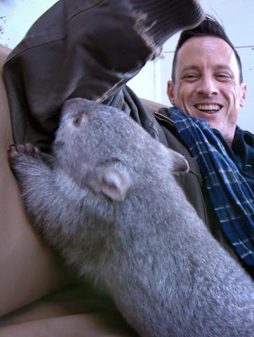Haben viel Spaß zusammen: Derek und Justin Johnston, der Chef-Wombat-Knuddeler