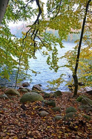 Aufatmen in frischer Luft und sich maßvoll in einer natürlichen Umgebung bewegen - dazu bietet die ursprüngliche Feldberger Seenlandschaft viele Gelegenheiten. (Foto: djd)