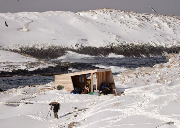 Auch im Winter finden Ornithologen auf Hornøya in Finnmark Schutz und Aussicht. (Foto Tormod Amundsen)