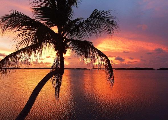 Die Florida Keys sind bekannt für ihre spektakulären Sonnenuntergänge. (Foto Katharina Büttel)