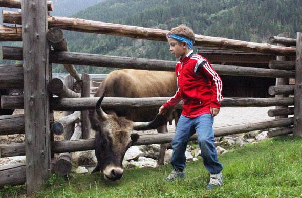 Die gehörnten Rindviecher sind selbst hinter dem Zaun nicht allen Nachwuchsalpinisten geheuer. (Foto Ulrike Katrin Peters)