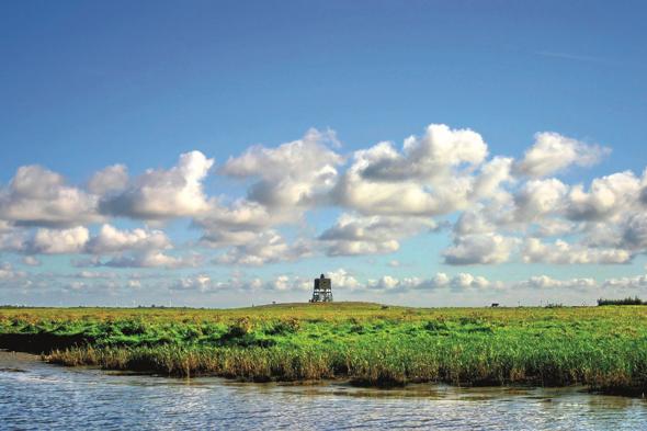 Ein besonderes Stück Schleswig-Holstein: das Katinger Watt (Foto Sibylle Stromberg)