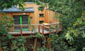 Panarbora – Schlafgenuss zwischen Baumwipfeln