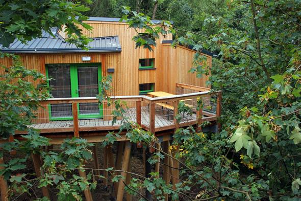 Die Panarbora-Baumhäuser befinden sich auf Stelzen zwischen herrlich grünen Bäumen. (Foto Karsten-Thilo Raab)