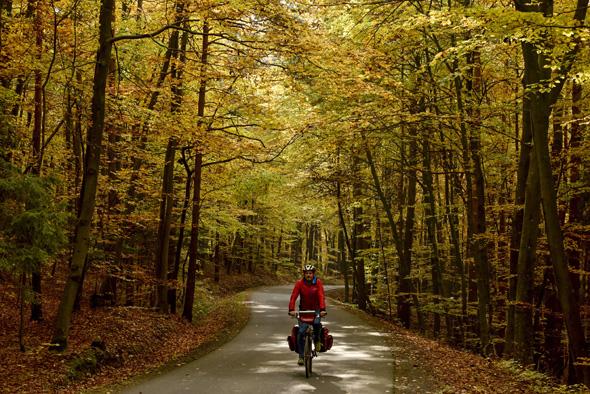 Auf Wunsch lässt sich die Weinland Radtour auch bequem mit einem Gepäckservice absolvieren.