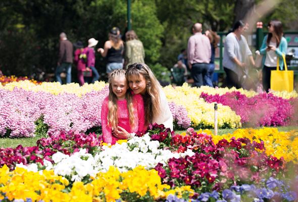Öffentliche Parks und private Gärten protzen mit ungeahnter Blütenpracht.