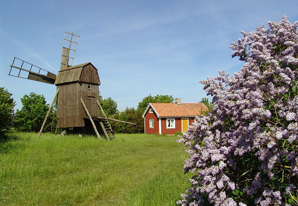 Das schwedischje Öland ist eine Insel voller Bilderbuchmotive.