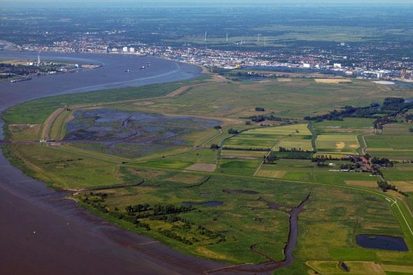 Südlich von Bremerhaven erstreckt sich das Naturschutzgebiet Luneplate auf einer ehemaligen Weserinsel. (Foto: djd)