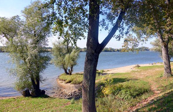 Auf der 220 Kilometer langen Wanderung ergeben sich immer wieder schöne Ausblicke auf die Donau. (Foto: Michael Körner)