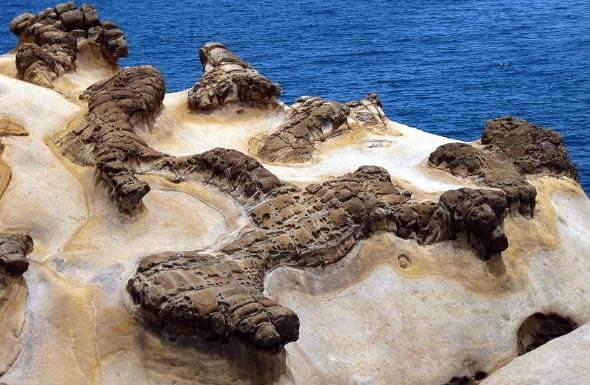 Yehliu ist bekannt für seine ungewöhnlichen Gesteinsformationen. (Foto Benjiho)