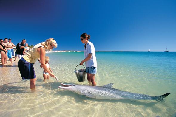 Foto Tourism Western Australia)