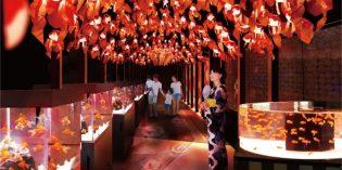 Tokio – Blub Blub Blub, im Aquarium ist was los