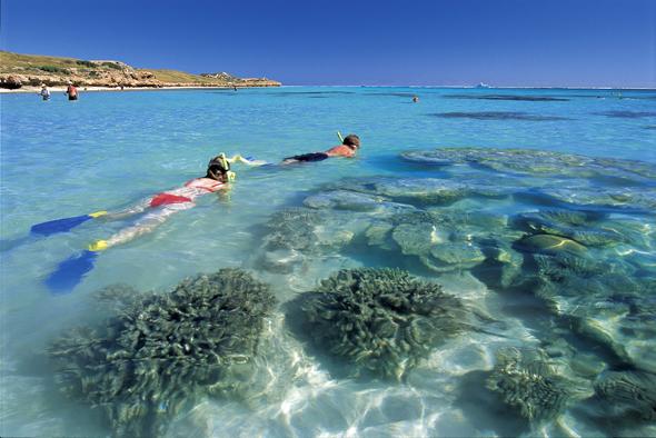 Auch das Schnorcheln am Ningaloo Reef eröffnet herrliche An- und Aussichten. (Foto Tourism Western Australia)