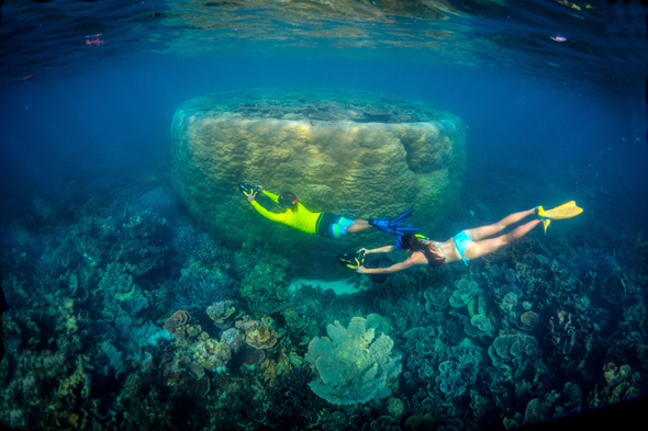 Auch unabhängig von den Big Five gibt es in der australischen Unterwasserwelt einiges zu entdecken. (Foto Tourism Western Australia)