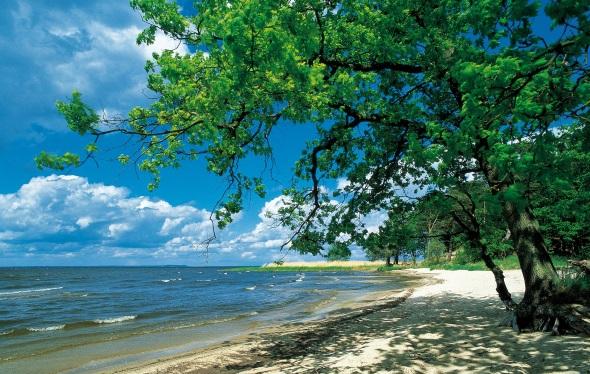 Mecklenburg-Vorpommern von seiner schönsten Seite: ein idyllische Bucht am Stettiner Haff (Foto:Grundner)