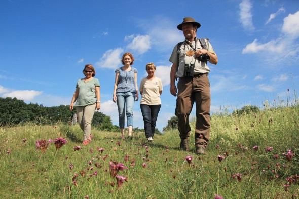 Die Altwarper Binnendünen sind ein außergewöhnlicher Naturraum und Heimat vieler seltener Pflanzen und Tiere (Foto E. Eichler)