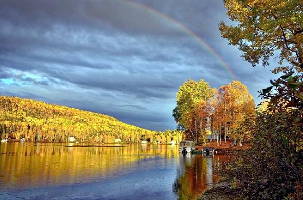 Viel prachtvoller geht es kaum: ein Regenbogen über dem kanadischen Blätterwald.