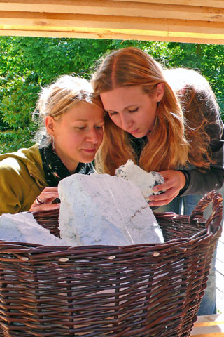 Im Nationalpark-Zentrum Königsstuhl kann man sich zum Beispiel das Kreide-Gestein näher anschauen. (Foto: djd)