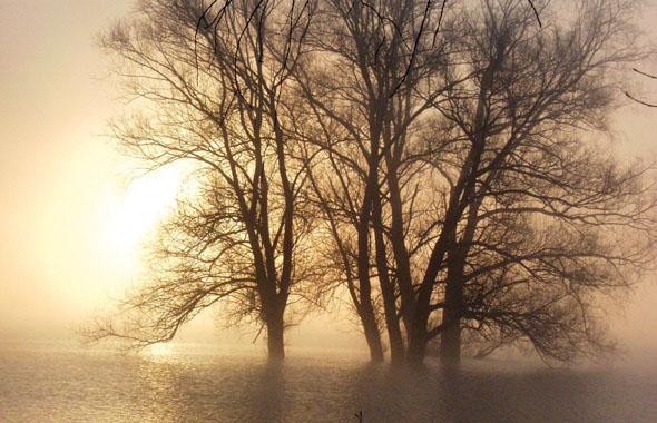 Die Sonne geht auf - und taucht das Untere Odertal in ein warmes Licht. (Foto: djd)