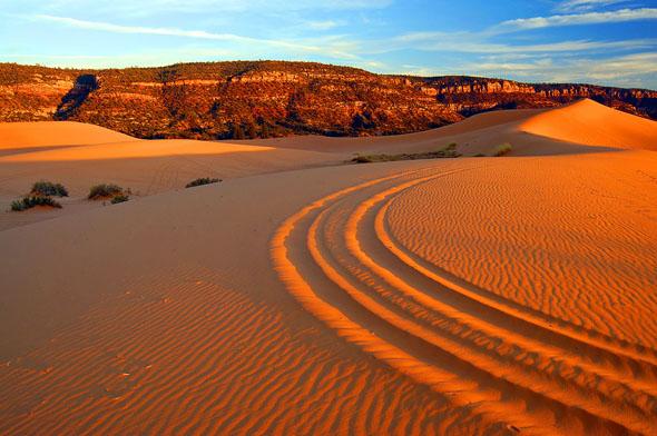 Traumlandschaft in Utah: die Coral Pink Sand Dunes. (Foto Tyler Cornell)