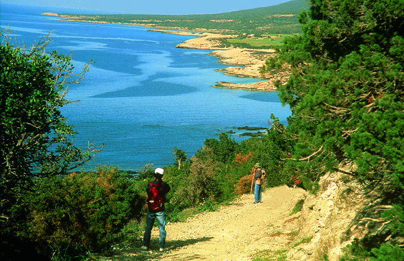 Vor allem entlang der Akamas Halbinsel ist die Region Páfos wunderbar wanderbar. (Foto Cyprus Tourism Organisation)