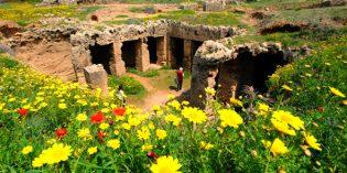 Páfos präsentiert Kunst vor antiker Kulisse