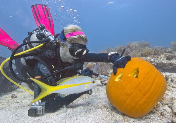 Wegen des Auftriebs ist das Schnitzen der Kürbisse unter Wasser besonders schwierig. (Foto Bob Care)