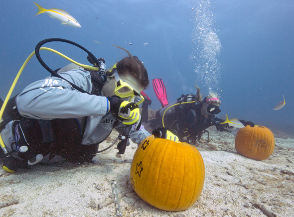 In neun Meter Tiefe mussten die Kürbisse geschnitzt und gestaltet werden. (Foto Bob Care)