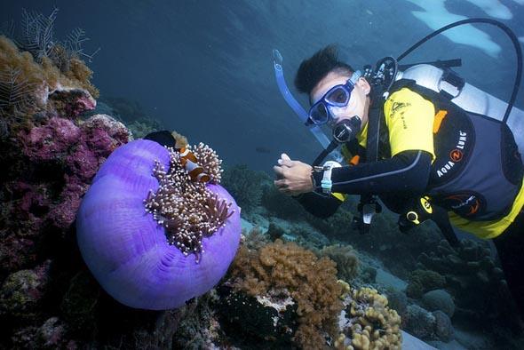 Tauchen vor der Koralleninsel Sipadan garantiert grandiose An- und Aussichten. (Foto Hasselkuss)