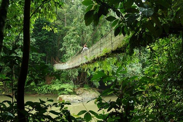 Atemberaubende Natur findet sich im und um den Kinabalu-Nationalpark. (Foto Hasselkuss)