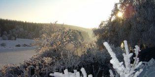 Großer Winterspaß im Oberharz
