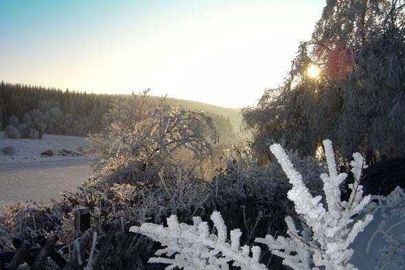 Im Oberharz führen schöne Winterwanderwege an den Stauseen entlang. (Foto: M. Leonhardt)