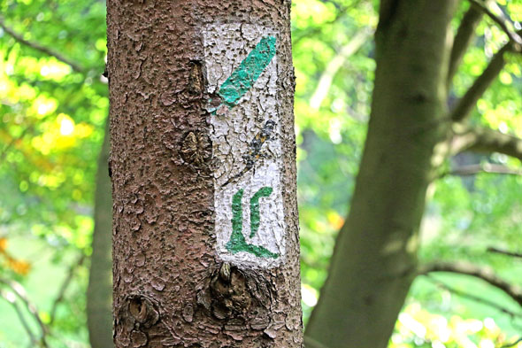 """Der Lutherweg ist mit einem grünen """"L"""" auf weißem Grund gekennzeichnet. (Foto: djd)"""