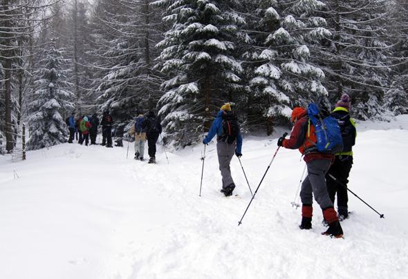 Wer weder Langlauf- noch Abfahrtski mag, kommt bei Schneeschuhwanderungen auf seine Kosten. (Foto Klaus Klöppel)