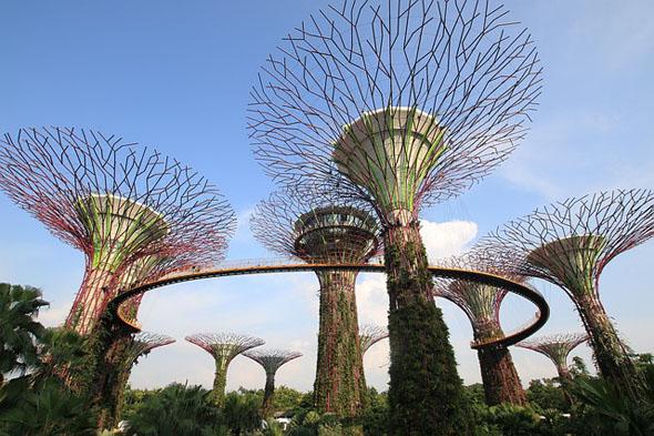 Nicht nur die Supertreee machen den den Besuch des Gardens by the Bay lohenswert.